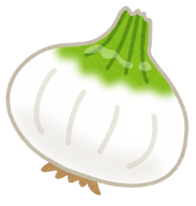 vegetable_shintamanegi[1]